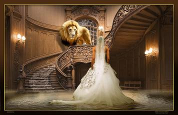 The bride of Christ meets her groom The Lion of Judah